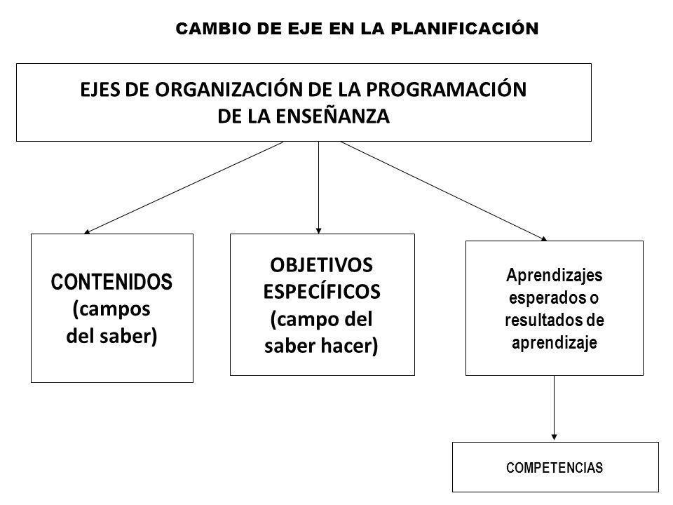 EJES DE ORGANIZACIÓN DE LA PROGRAMACIÓN DE LA ENSEÑANZA