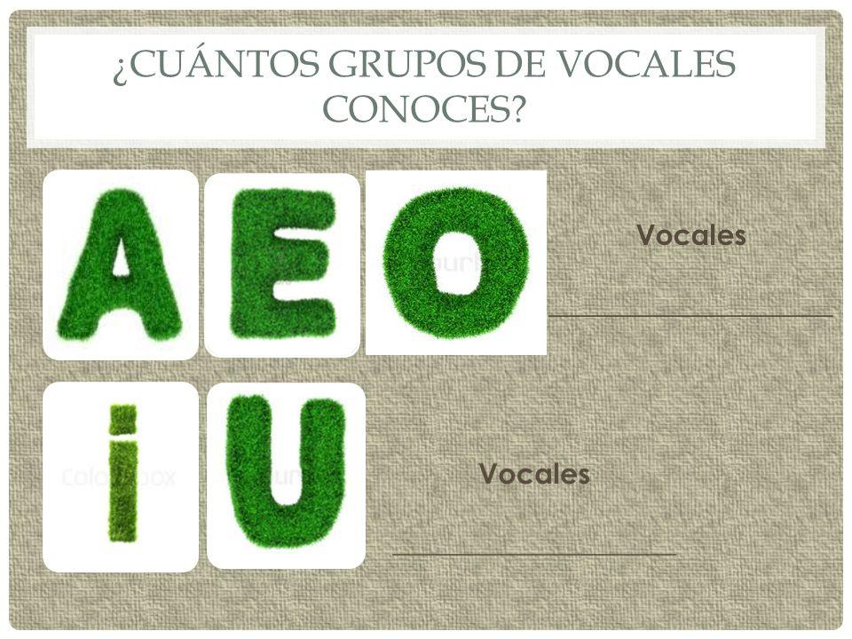 ¿Cuántos grupos de vocales conoces