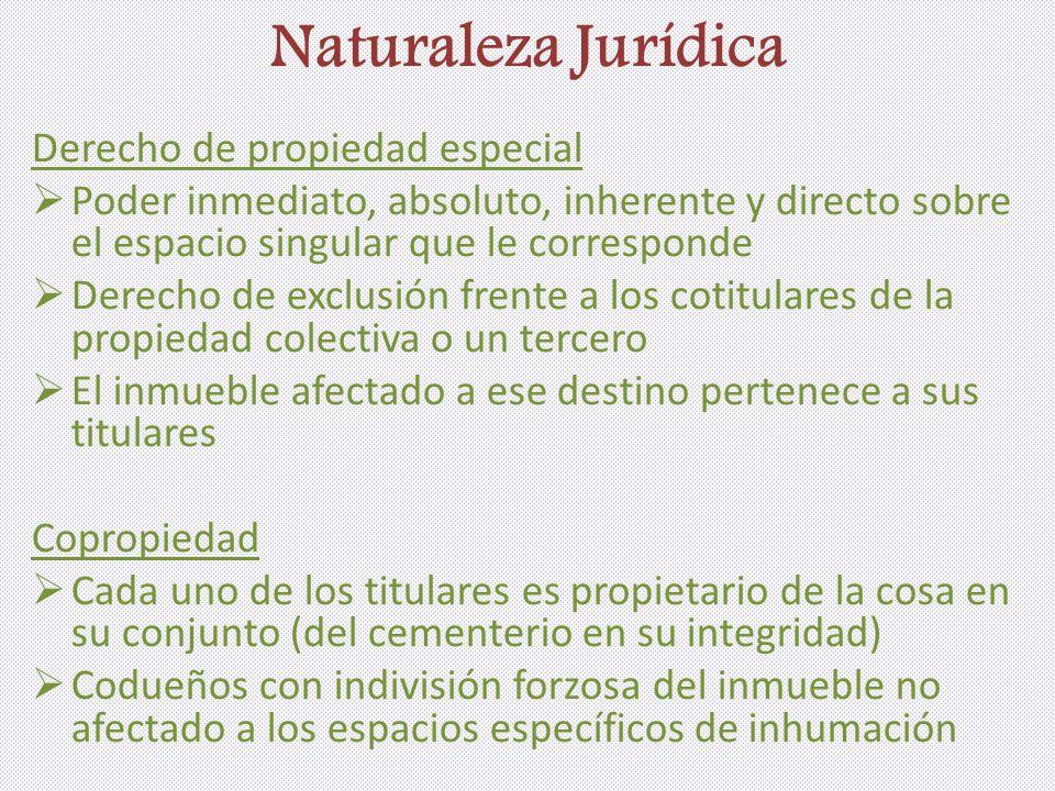 Naturaleza Jurídica Derecho de propiedad especial