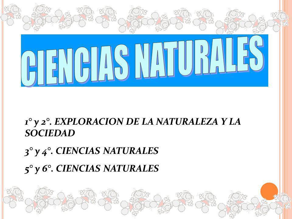 CIENCIAS NATURALES 1° y 2°. EXPLORACION DE LA NATURALEZA Y LA SOCIEDAD