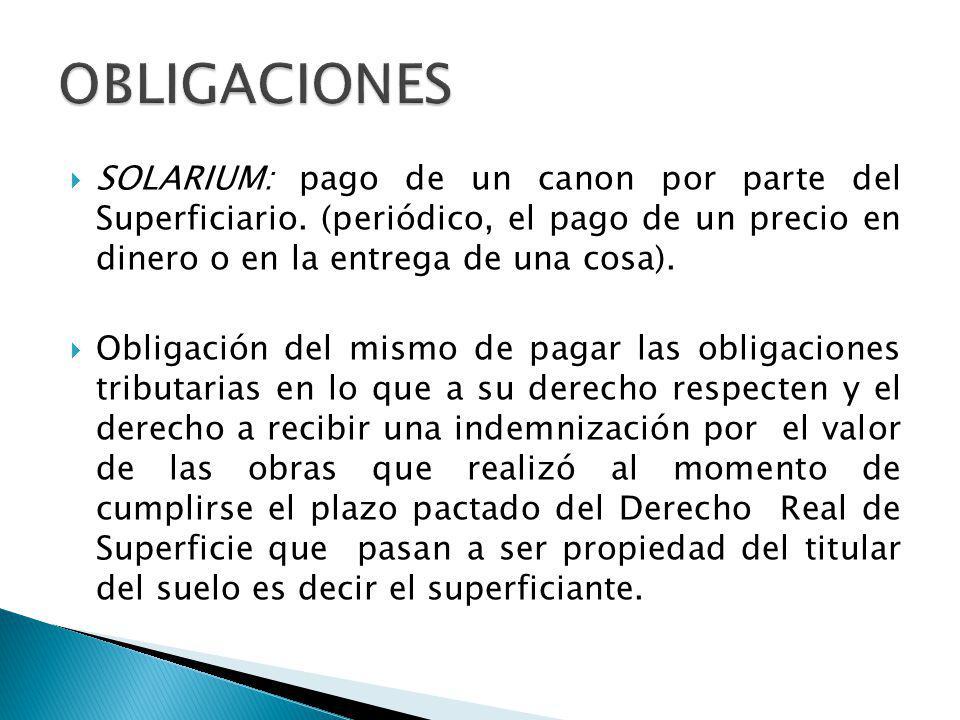 OBLIGACIONES SOLARIUM: pago de un canon por parte del Superficiario. (periódico, el pago de un precio en dinero o en la entrega de una cosa).