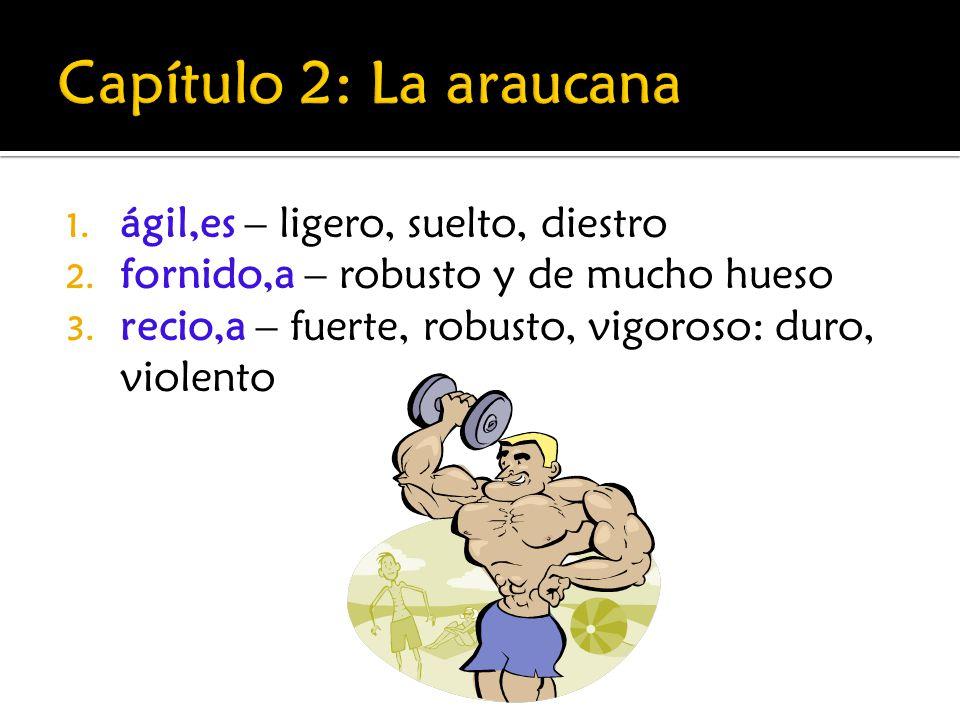Capítulo 2: La araucana ágil,es – ligero, suelto, diestro