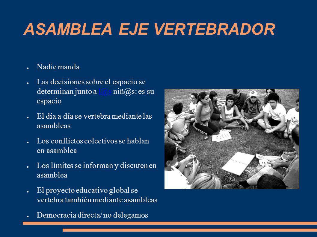 ASAMBLEA EJE VERTEBRADOR