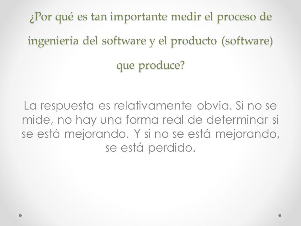 ¿Por qué es tan importante medir el proceso de ingeniería del software y el producto (software) que produce