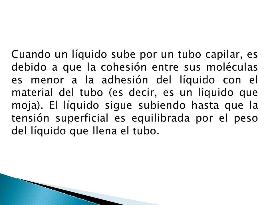 Cuando un líquido sube por un tubo capilar, es debido a que la cohesión entre sus moléculas es menor a la adhesión del líquido con el material del tubo (es decir, es un líquido que moja).
