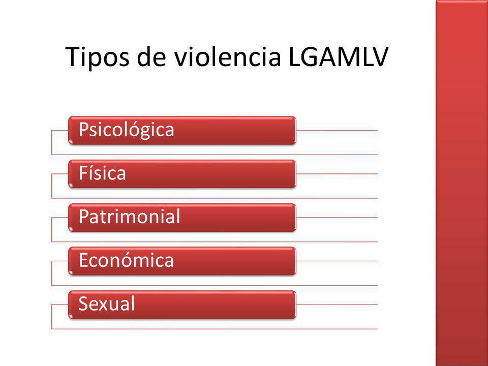 Tipos de violencia LGAMLV