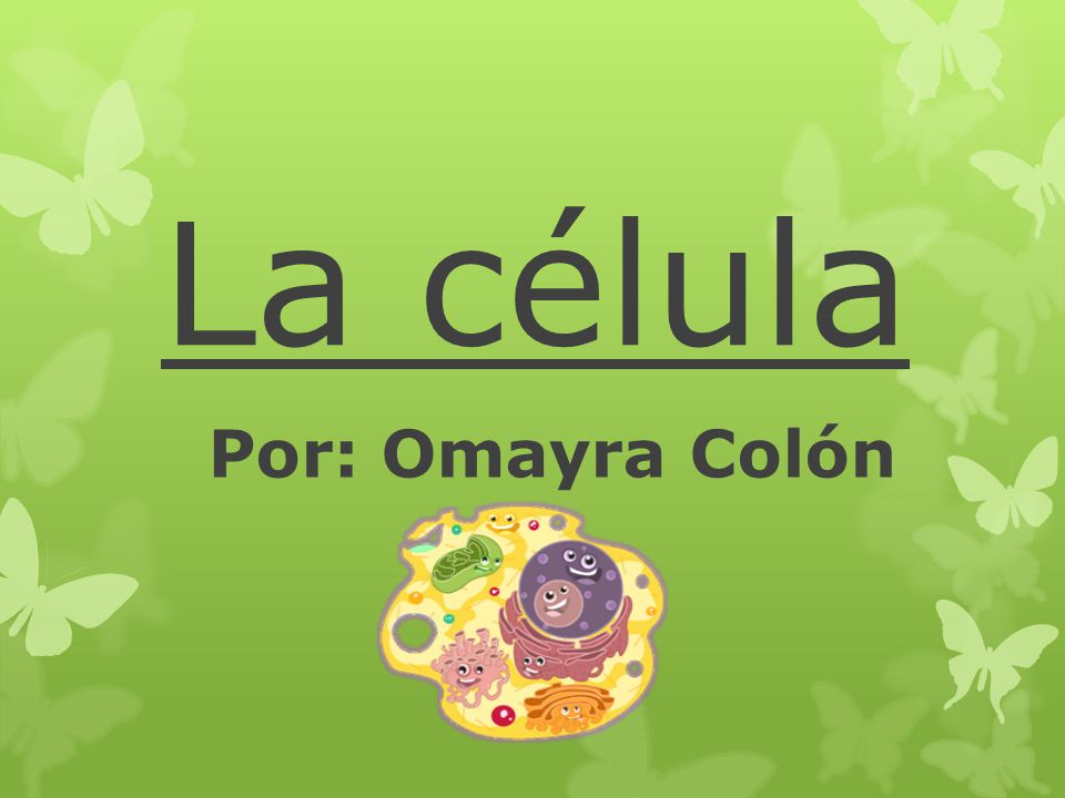 La célula Por: Omayra Colón