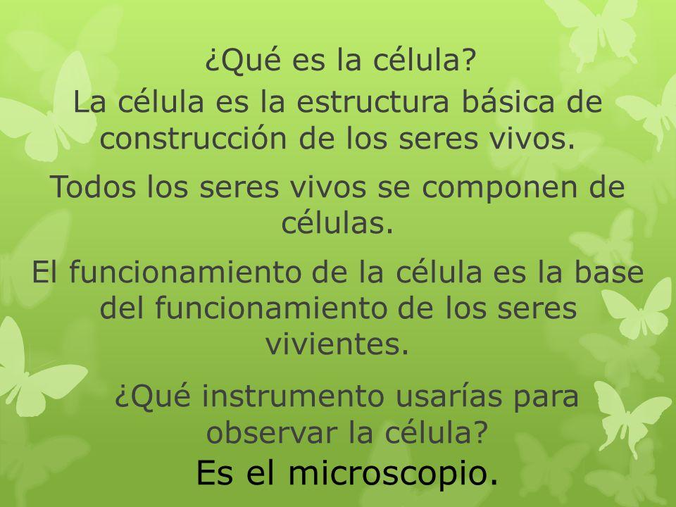 ¿Qué instrumento usarías para observar la célula