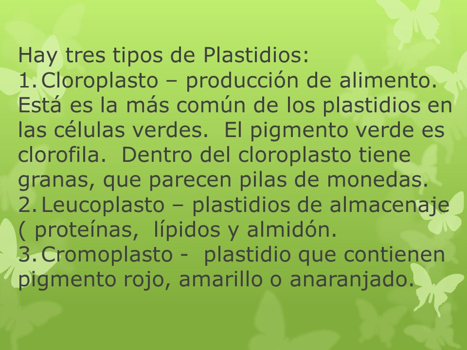 Hay tres tipos de Plastidios: 1. Cloroplasto – producción de alimento