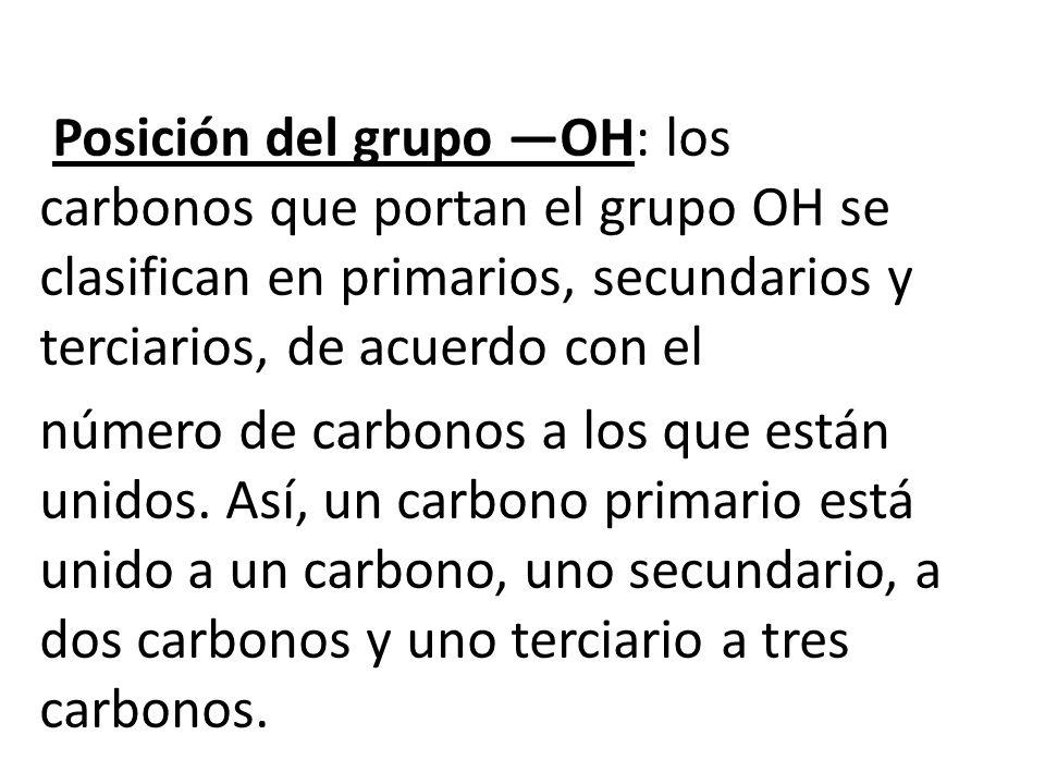 Posición del grupo —OH: los carbonos que portan el grupo OH se clasifican en primarios, secundarios y terciarios, de acuerdo con el número de carbonos a los que están unidos.