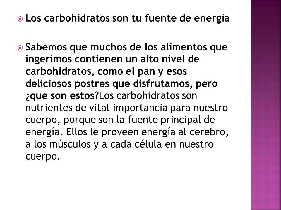 Los carbohidratos son tu fuente de energía