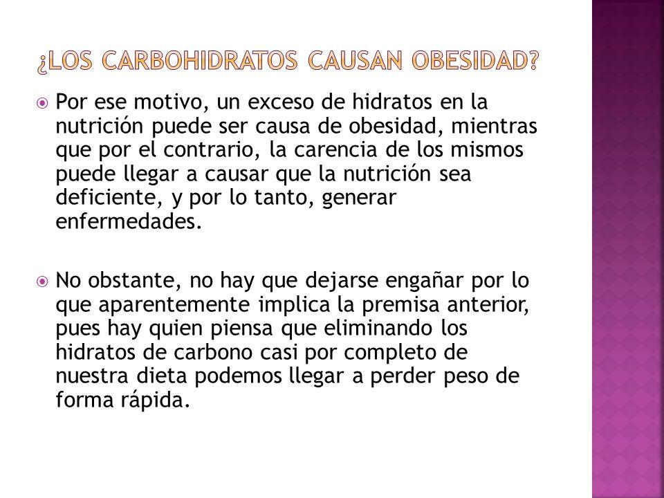 ¿Los carbohidratos causan obesidad