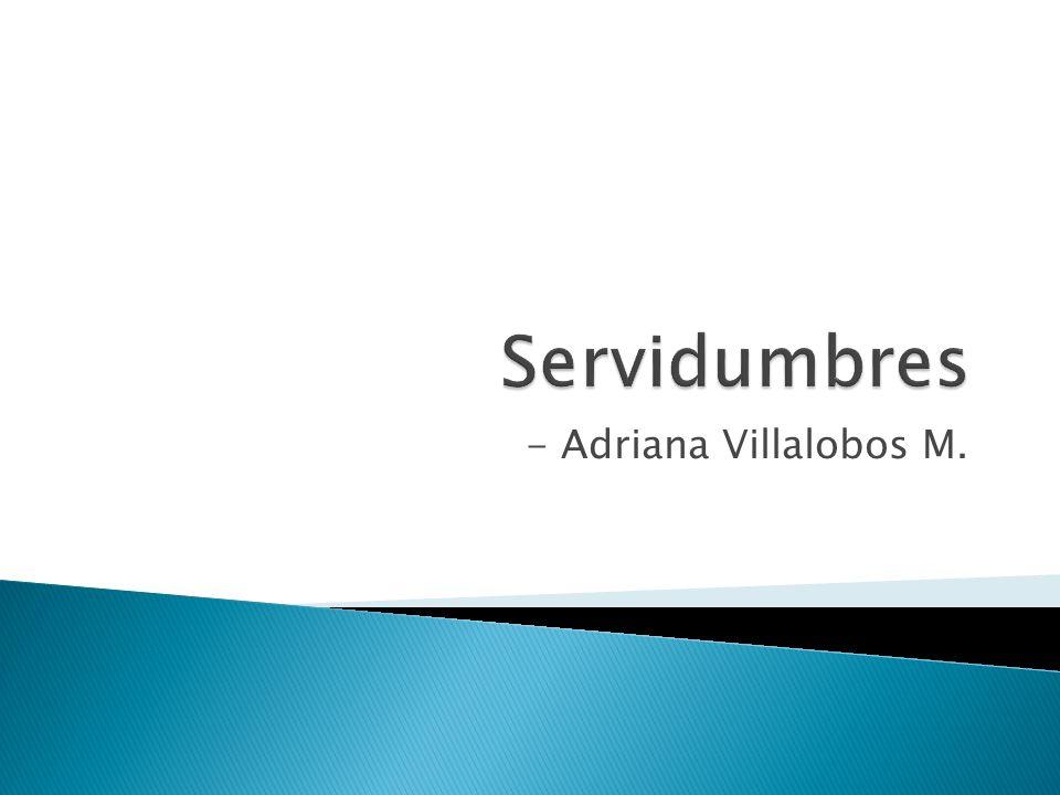 Servidumbres - Adriana Villalobos M.