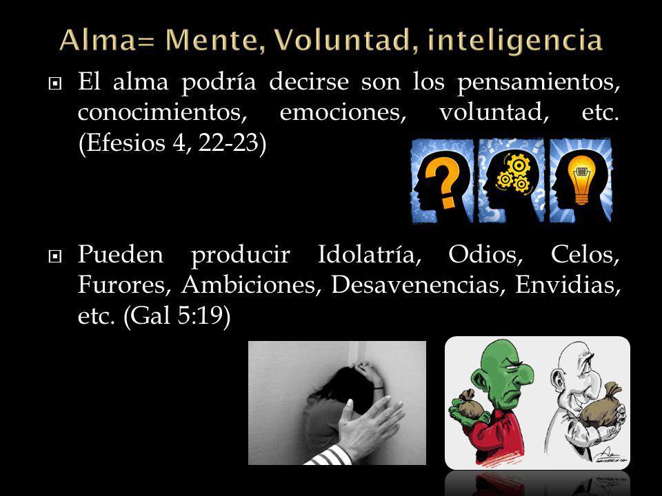Alma= Mente, Voluntad, inteligencia