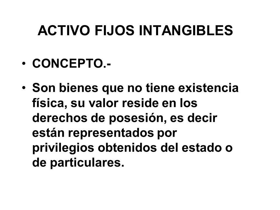 ACTIVO FIJOS INTANGIBLES