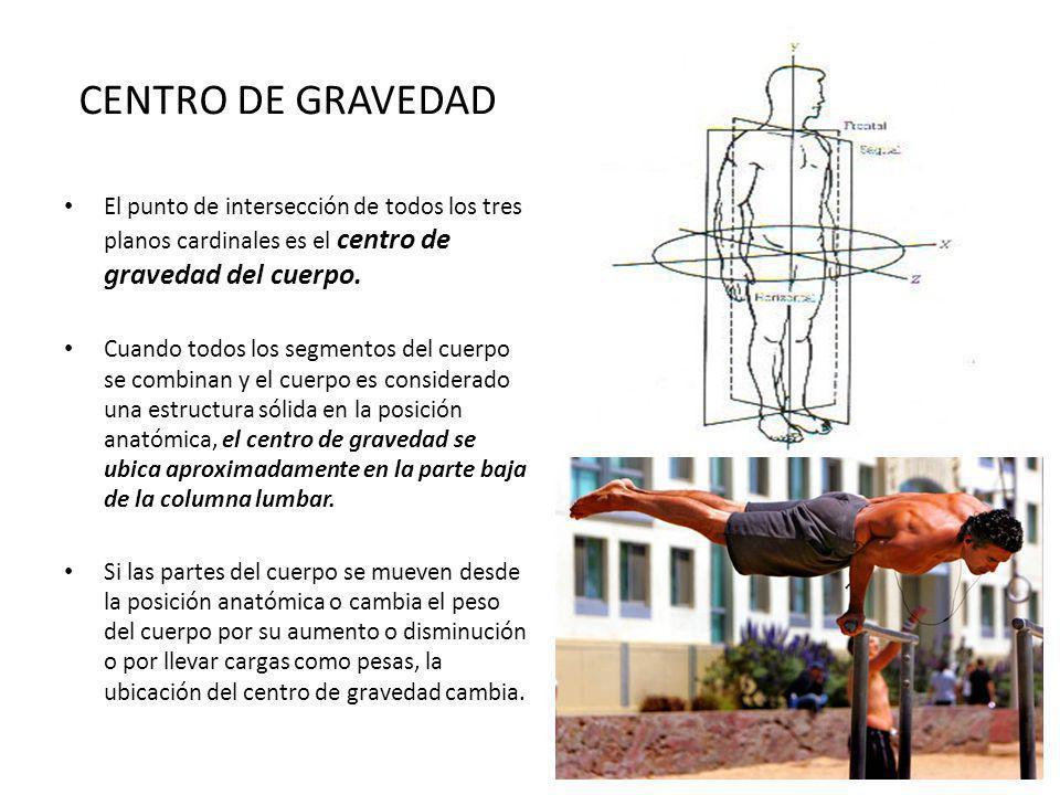 CENTRO DE GRAVEDAD El punto de intersección de todos los tres planos cardinales es el centro de gravedad del cuerpo.