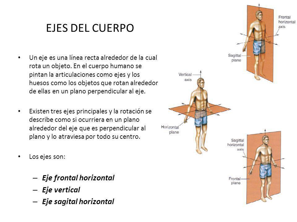 EJES DEL CUERPO Eje frontal horizontal Eje vertical