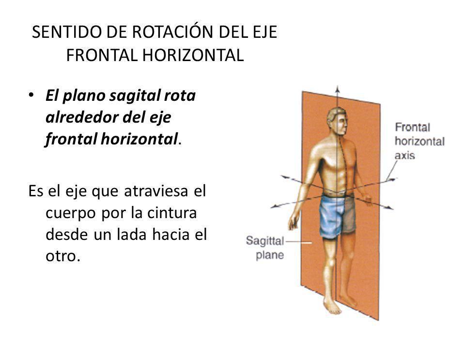 SENTIDO DE ROTACIÓN DEL EJE FRONTAL HORIZONTAL