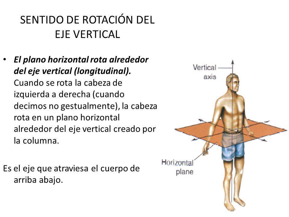 SENTIDO DE ROTACIÓN DEL EJE VERTICAL