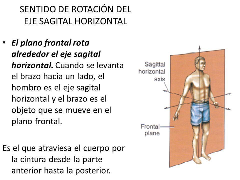 SENTIDO DE ROTACIÓN DEL EJE SAGITAL HORIZONTAL