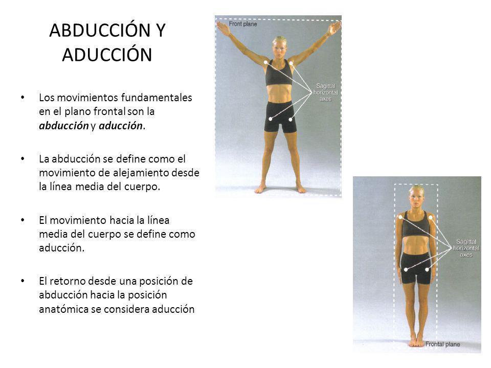 ABDUCCIÓN Y ADUCCIÓN Los movimientos fundamentales en el plano frontal son la abducción y aducción.