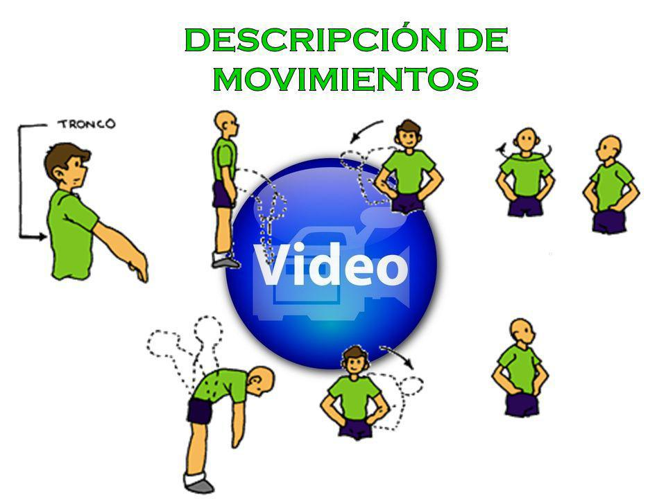 DESCRIPCIÓN DE MOVIMIENTOS