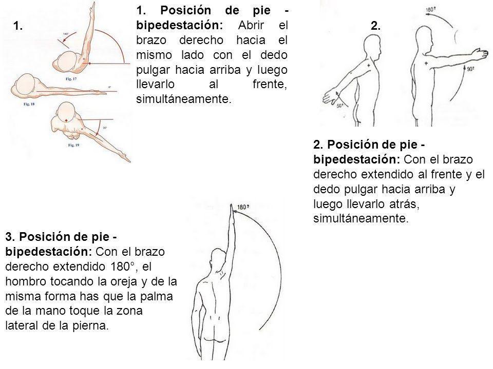 1. Posición de pie - bipedestación: Abrir el brazo derecho hacia el mismo lado con el dedo pulgar hacia arriba y luego llevarlo al frente, simultáneamente.