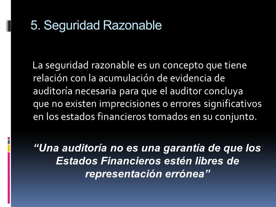 5. Seguridad Razonable