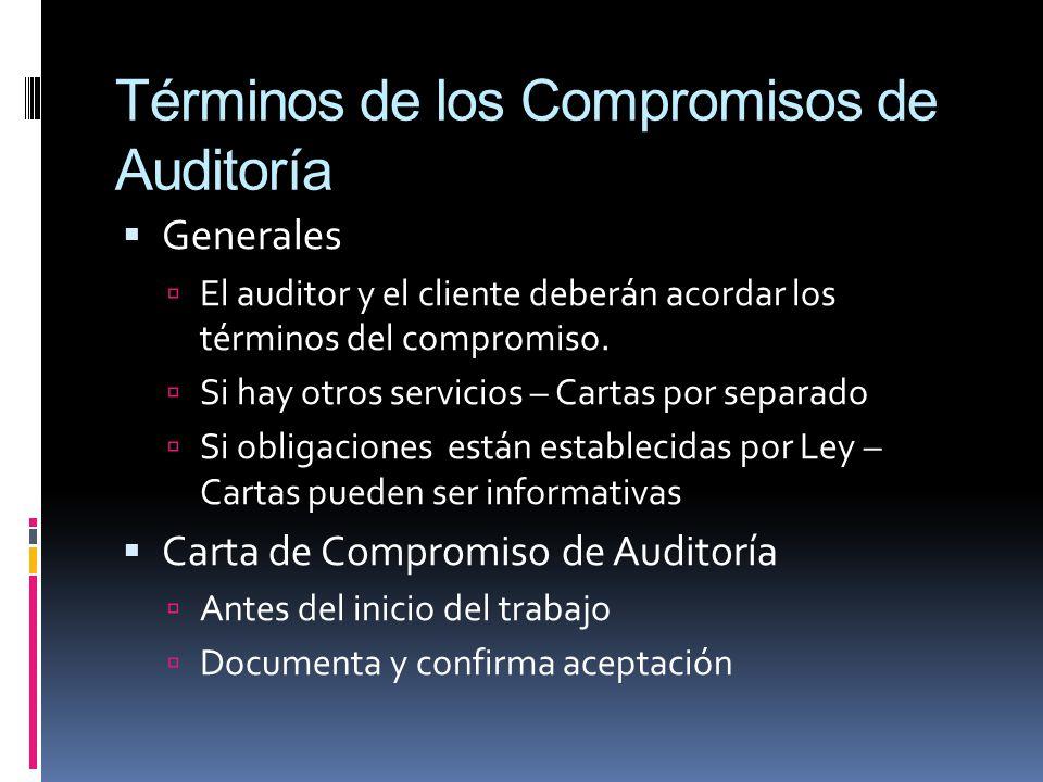 Términos de los Compromisos de Auditoría