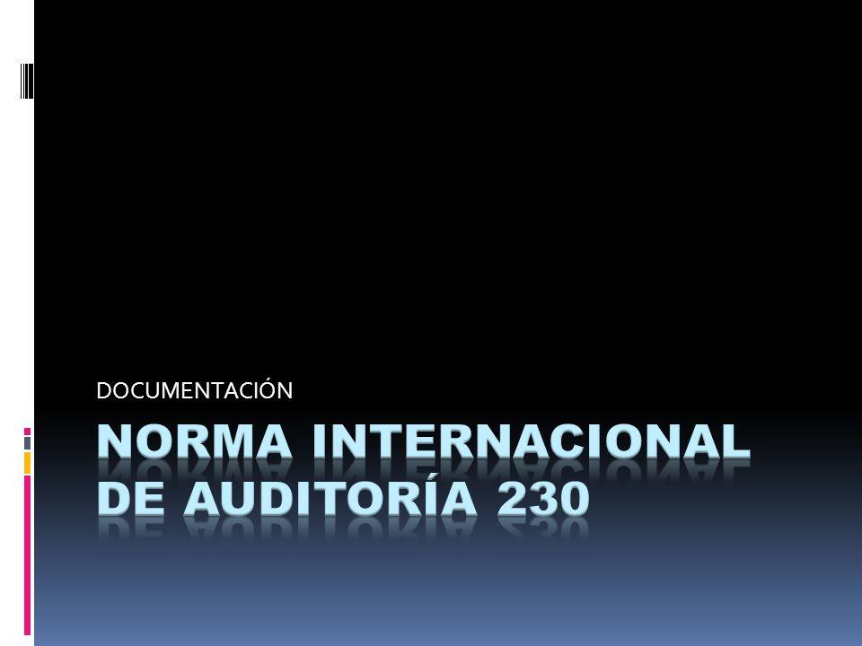 NORMA INTERNACIONAL DE AUDITORÍA 230