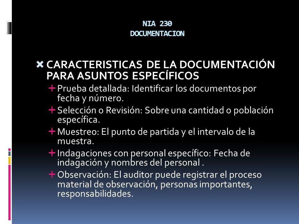 CARACTERISTICAS DE LA DOCUMENTACIÓN PARA ASUNTOS ESPECÍFICOS
