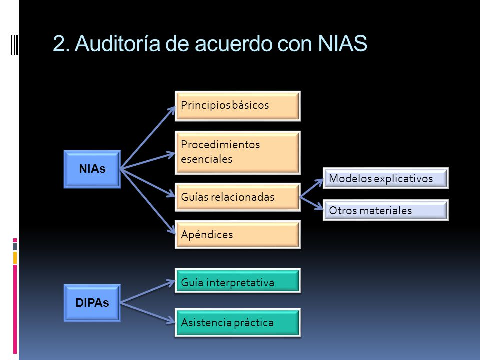 2. Auditoría de acuerdo con NIAS