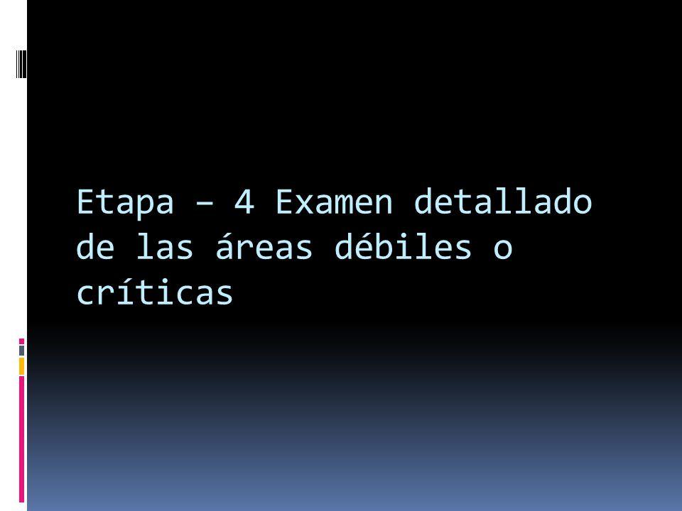 Etapa – 4 Examen detallado de las áreas débiles o críticas