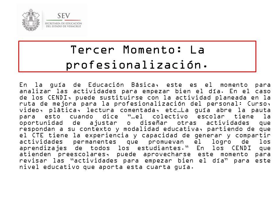 Tercer Momento: La profesionalización.