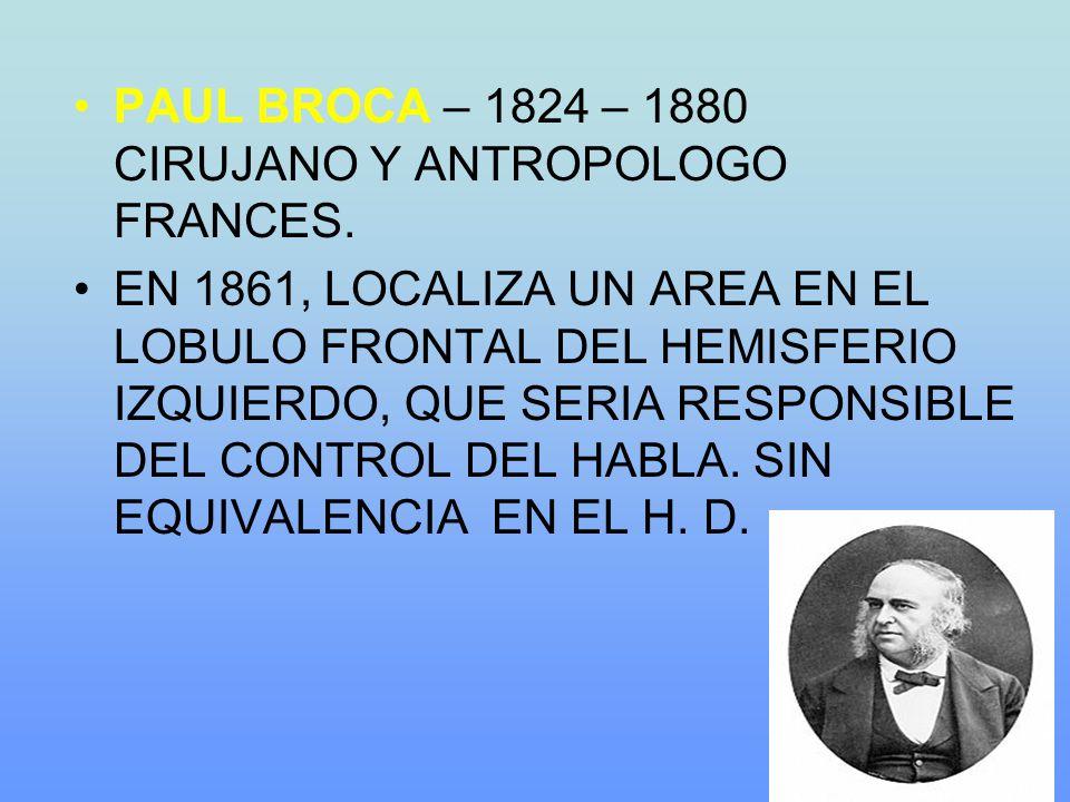 PAUL BROCA – 1824 – 1880 CIRUJANO Y ANTROPOLOGO FRANCES.