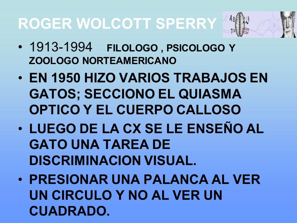 ROGER WOLCOTT SPERRY 1913-1994 FILOLOGO , PSICOLOGO Y ZOOLOGO NORTEAMERICANO.