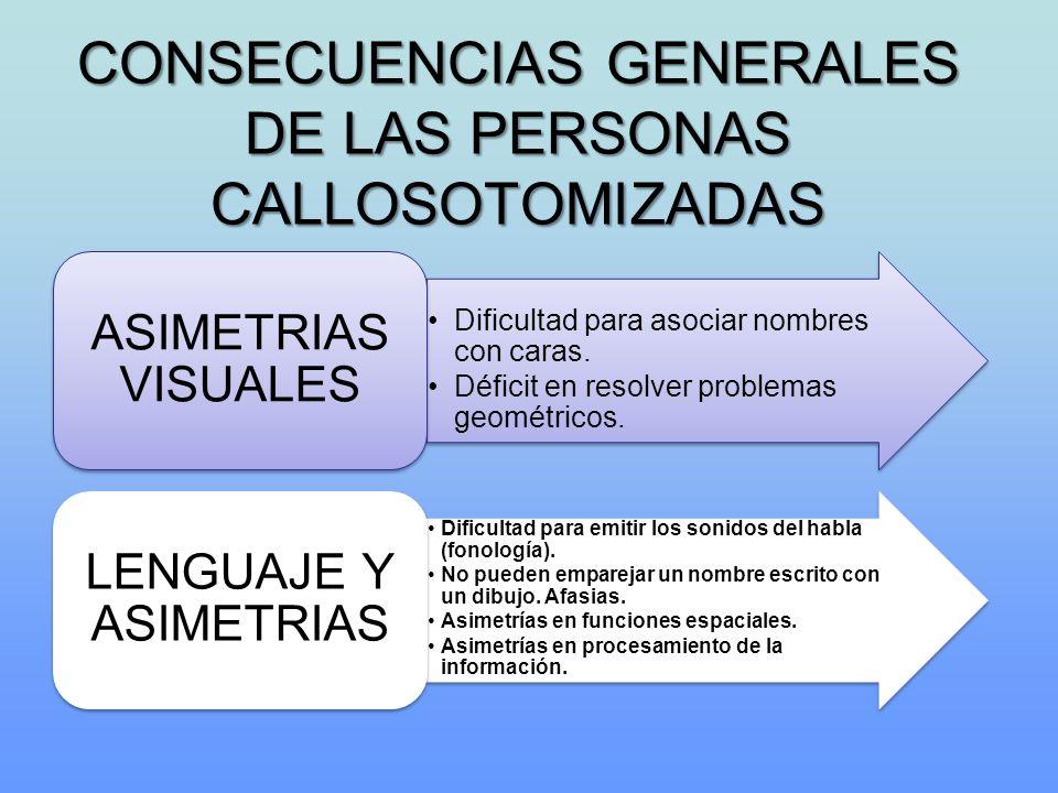 CONSECUENCIAS GENERALES DE LAS PERSONAS CALLOSOTOMIZADAS