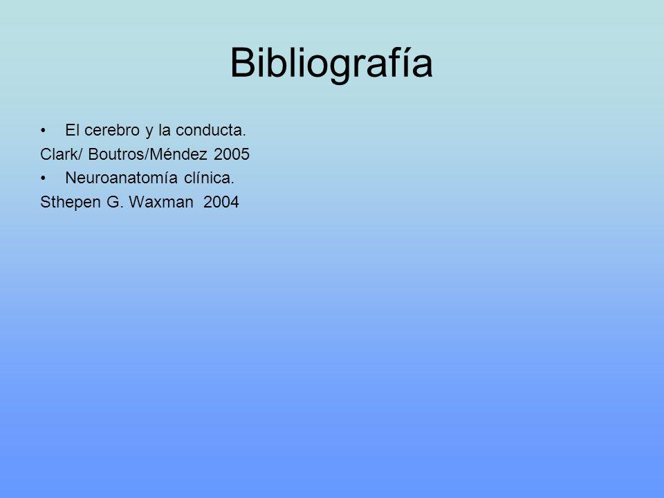Bibliografía El cerebro y la conducta. Clark/ Boutros/Méndez 2005