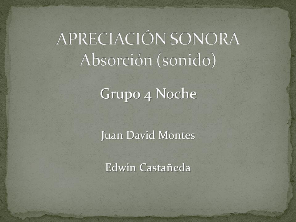 APRECIACIÓN SONORA Absorción (sonido)