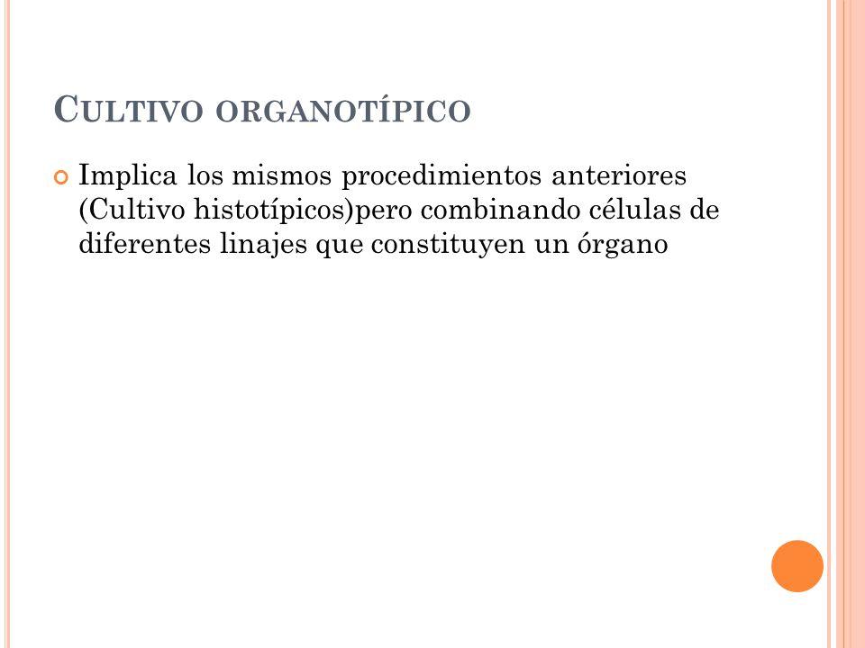 Cultivo organotípico