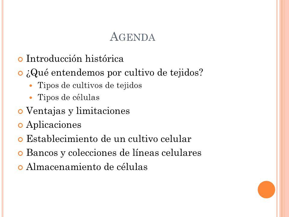 Agenda Introducción histórica ¿Qué entendemos por cultivo de tejidos