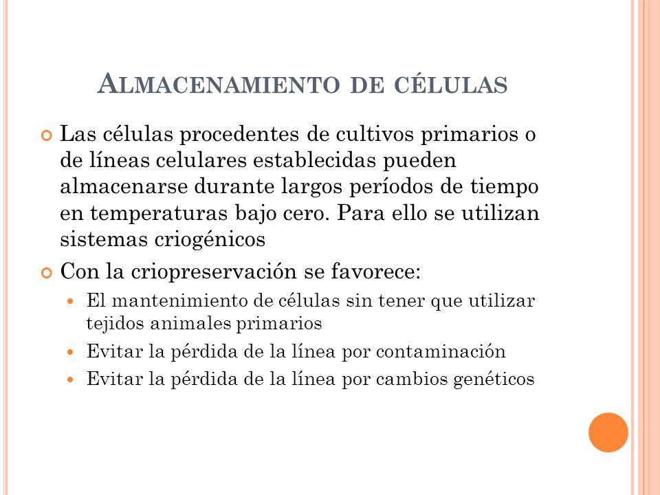 Almacenamiento de células