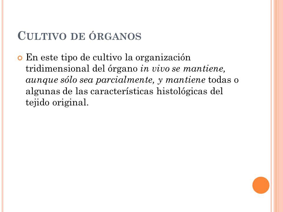 Cultivo de órganos
