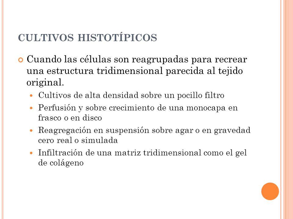 cultivos histotípicos