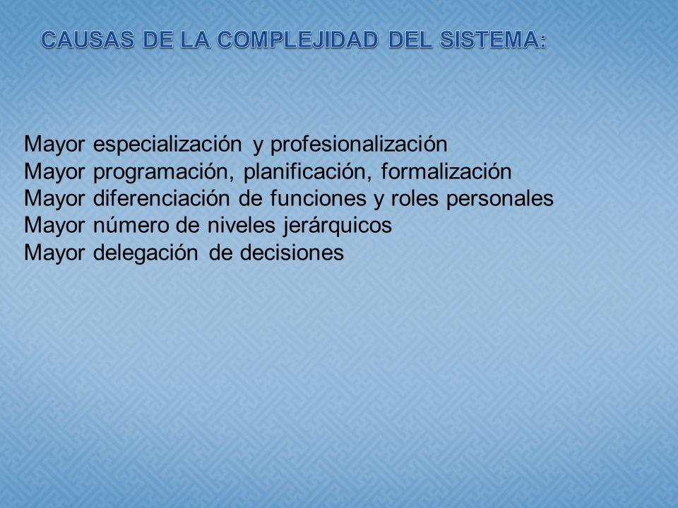 CAUSAS DE LA COMPLEJIDAD DEL SISTEMA: