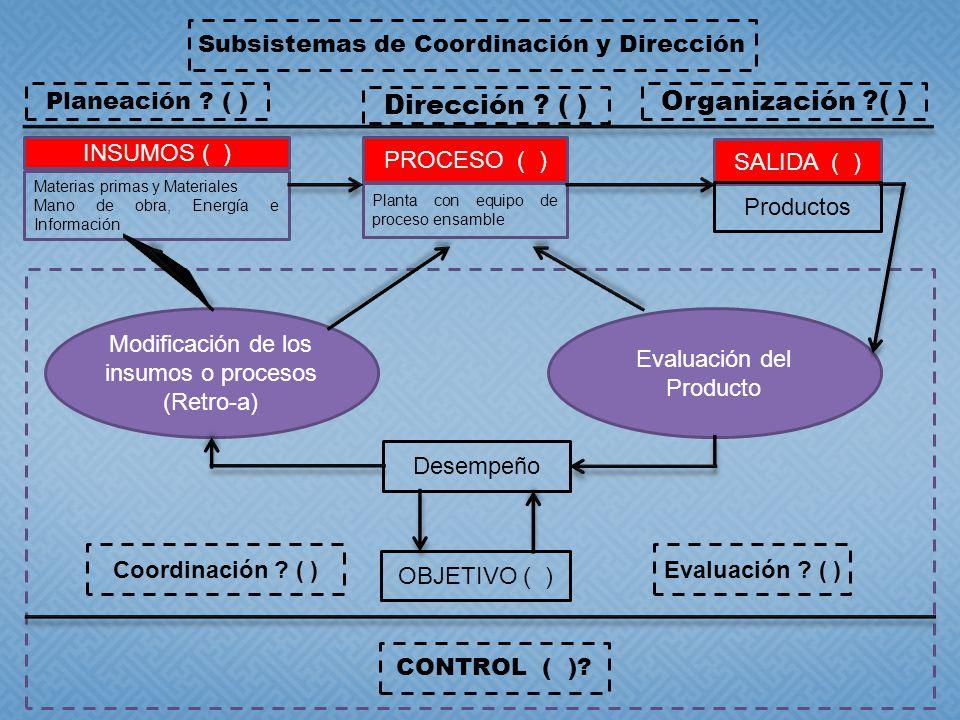 Organización ( ) Dirección ( ) INSUMOS ( ) SALIDA ( ) PROCESO ( )
