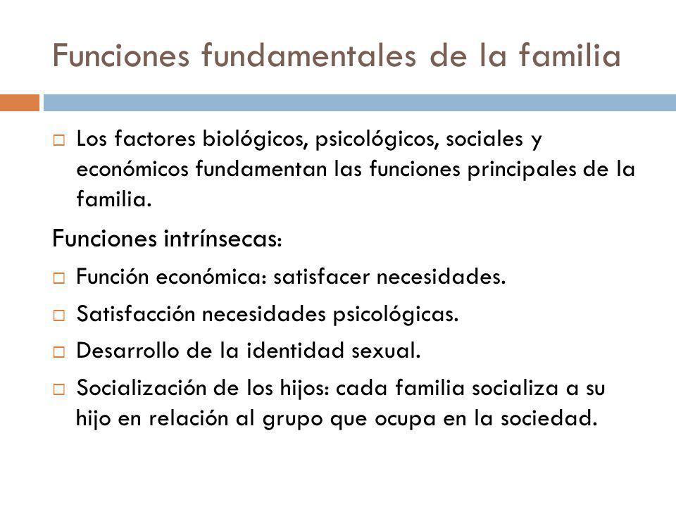Funciones fundamentales de la familia