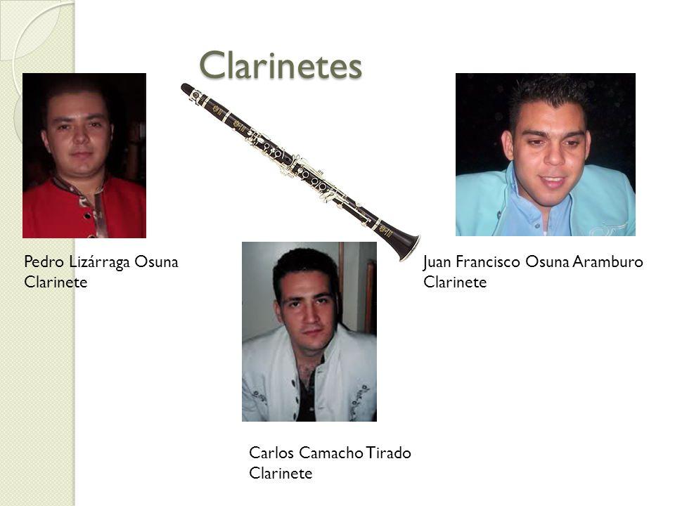 Clarinetes Pedro Lizárraga Osuna Clarinete