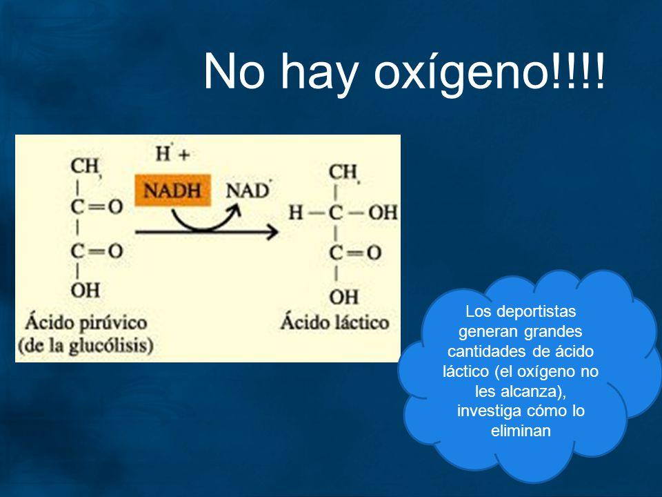 No hay oxígeno!!!.