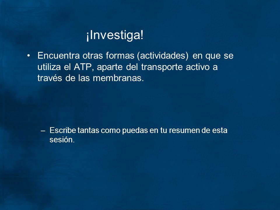 ¡Investiga! Encuentra otras formas (actividades) en que se utiliza el ATP, aparte del transporte activo a través de las membranas.